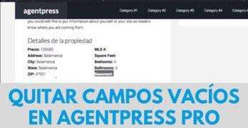 Quitar campos vacíos de los detalles de la propiedad en Agentpress Pro