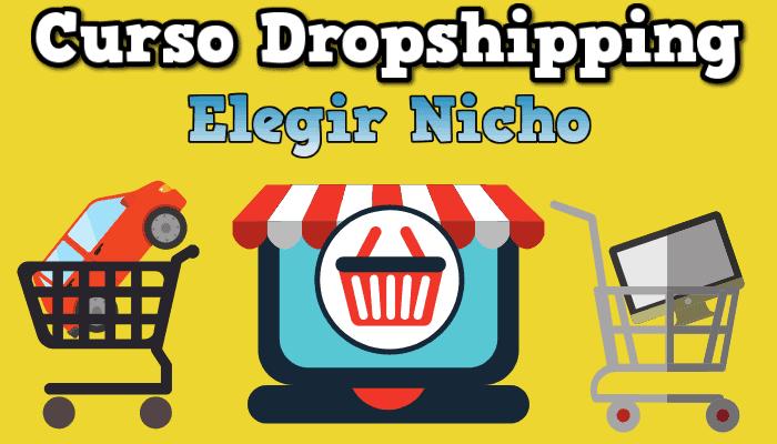 elegir nicho dropshipping