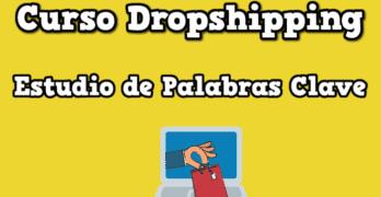 curso dropshipping palabras clave